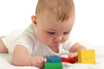 Early brain development todays parent early brain development malvernweather Choice Image