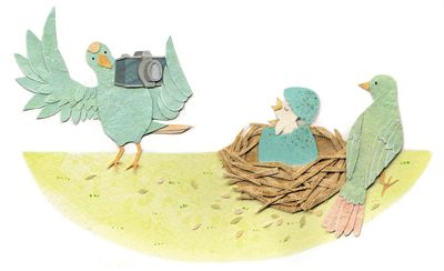 illustration of birds taking pictures of their egg hatching