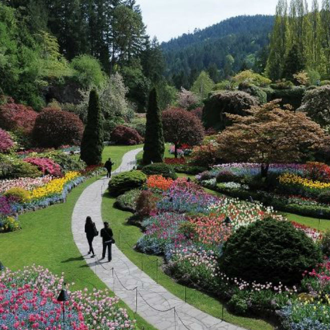 Photo: Butchart Gardens
