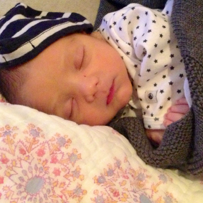 Photo: Leo about a week old, Olivia Stren
