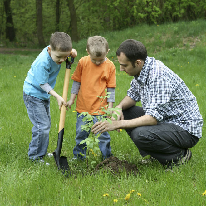 Easy Earth Day activity for kids: plant a tree - Today's ...