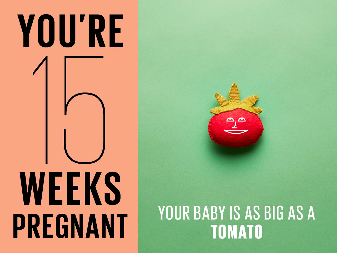 Felt tomato used to show how big baby is at 15 weeks pregnant