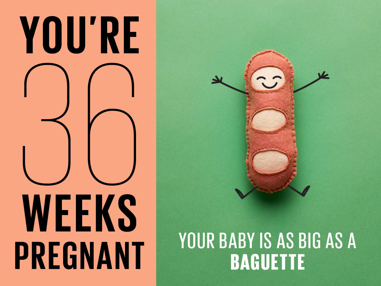 Felt Baguette Used To Show How Baby Is At 36 Weeks