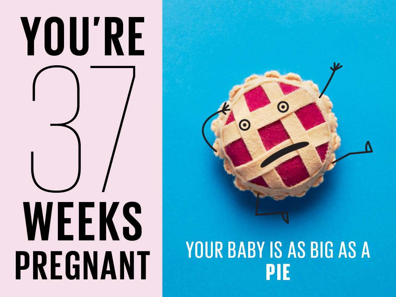 Felt pie used to show how big baby is at 37 weeks