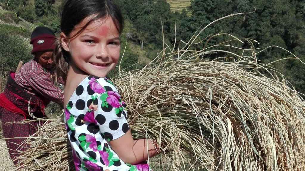 little girl with hay in Nepal