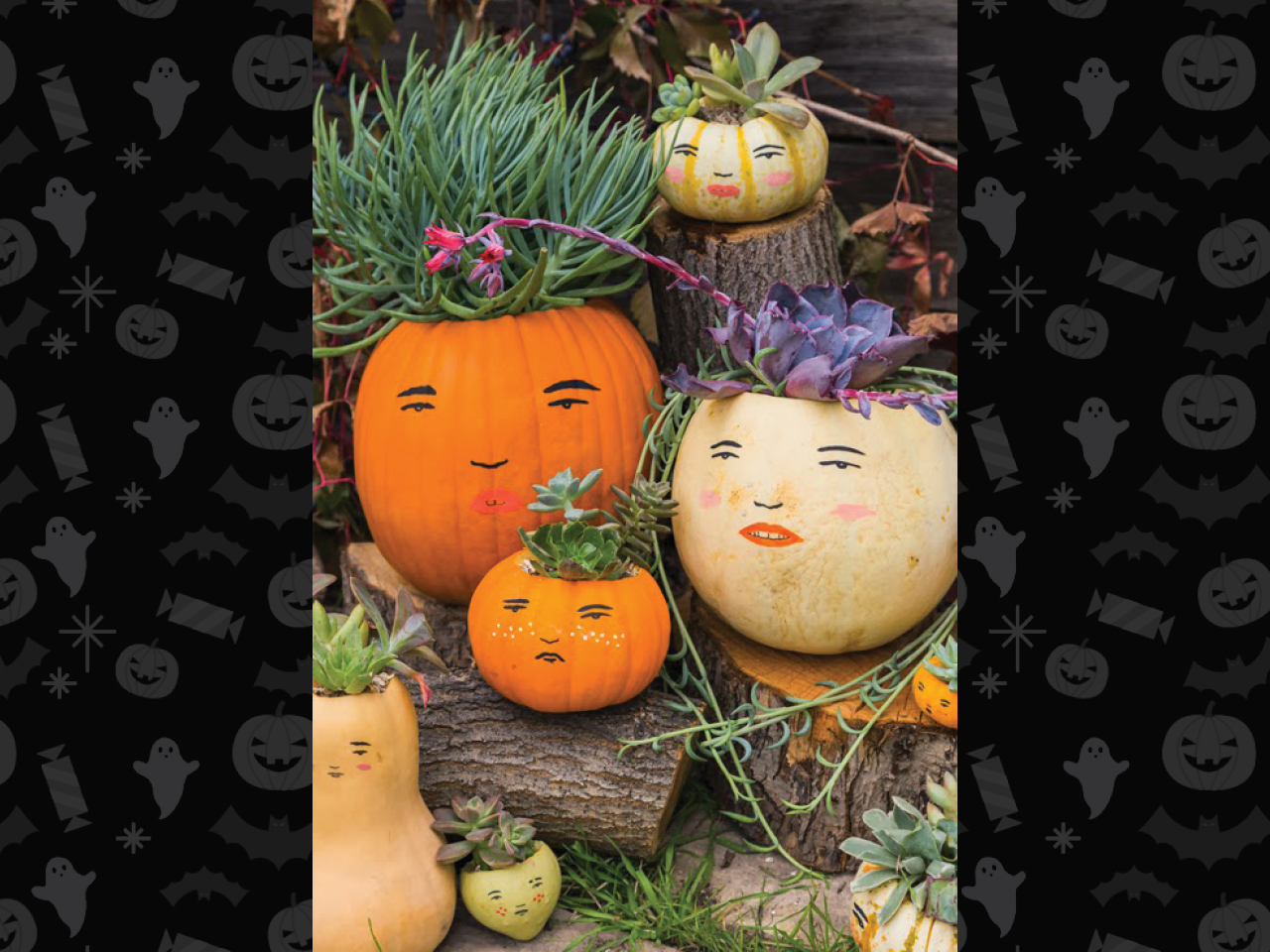 pumpkin family with succulent hair