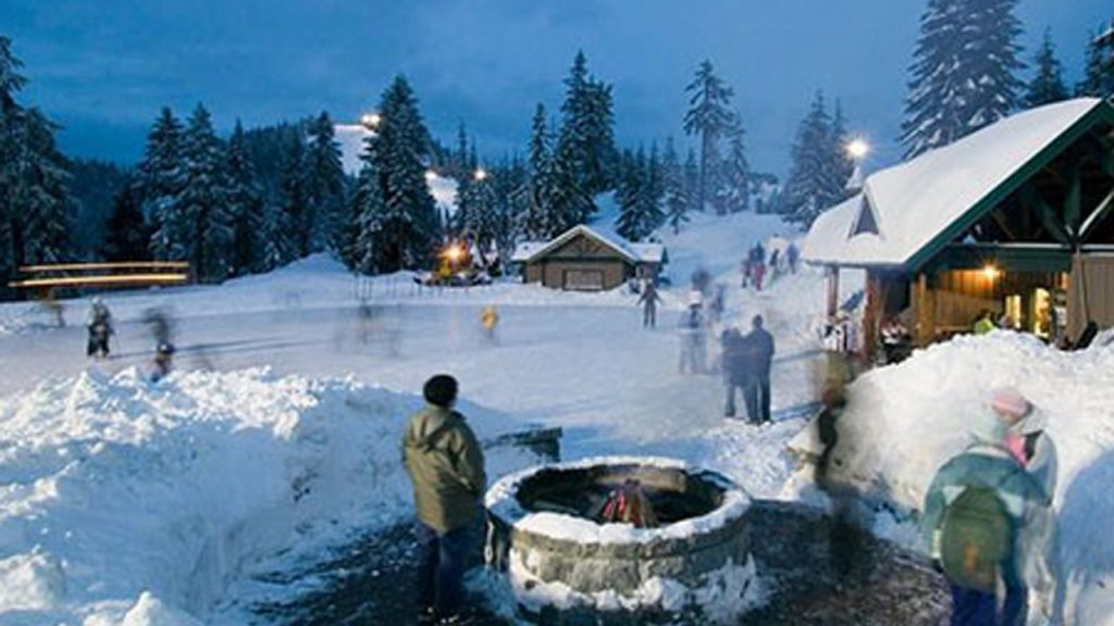 People standing near a fire overlooking a skating rink in the forest