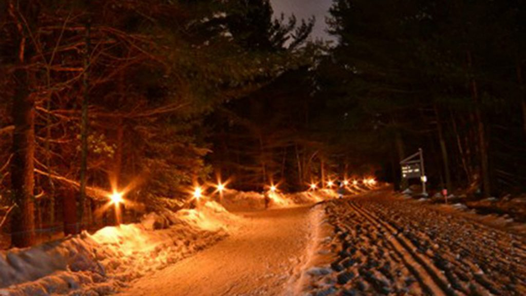 Frozen skating trail in the forest at night