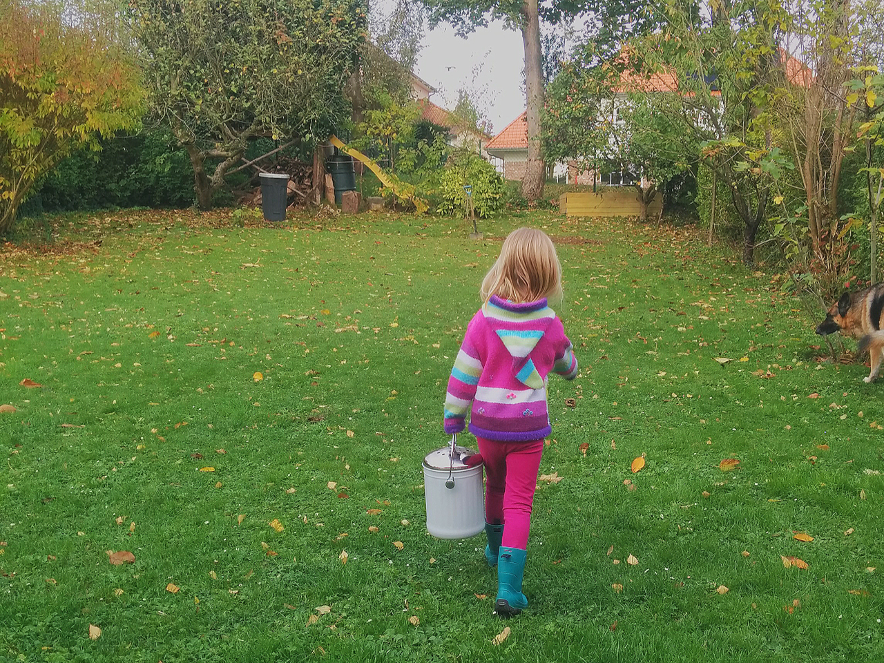 Little girl carrying a bucket to the backyard