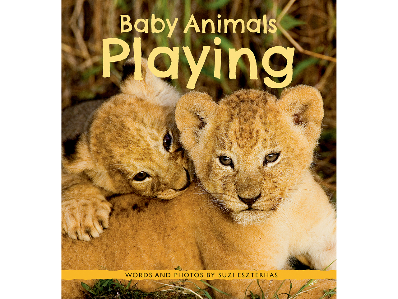 Baby Animals Playing book cover