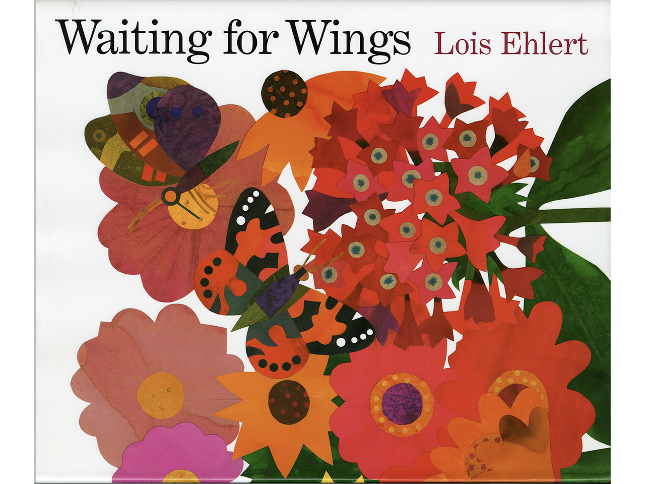 Waiting for Wings book cover