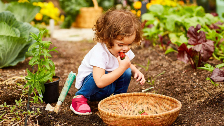 How to raise a vegetable-loving kid