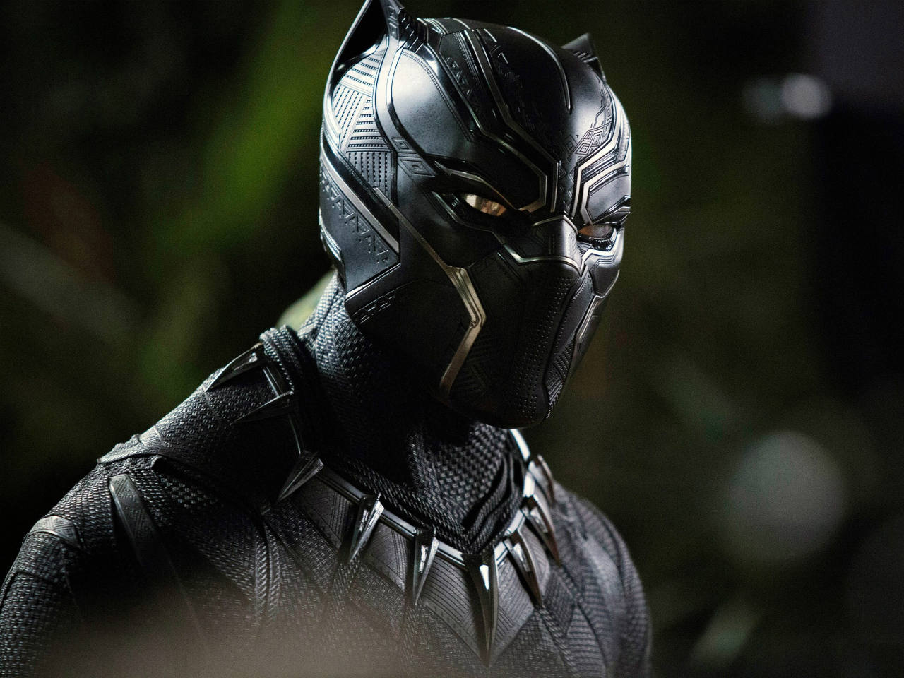 A still of Black Panther