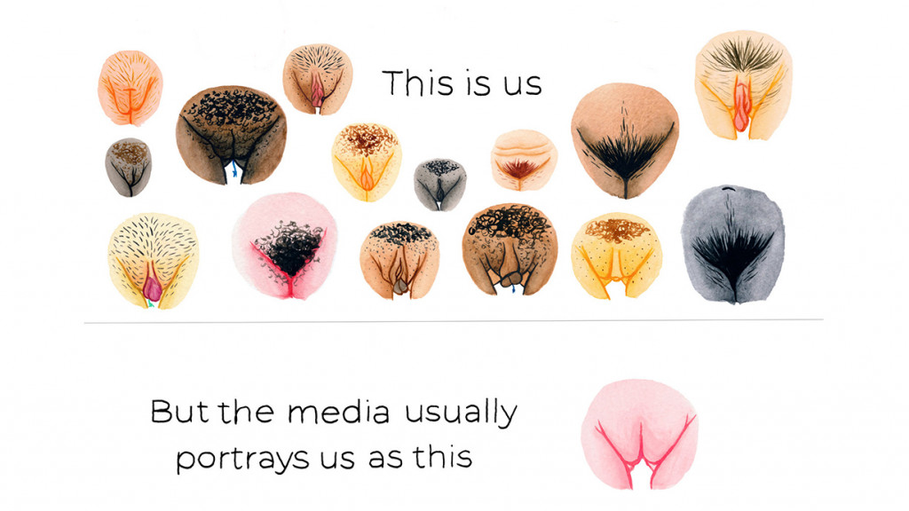 Illustrations of vulva comparisons