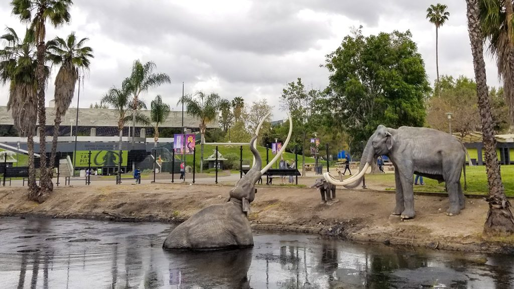 Elephants in La Brea Tar Pits