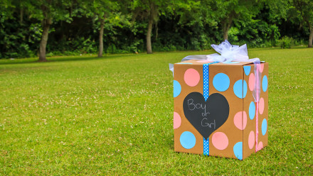 A box for a gender reveal