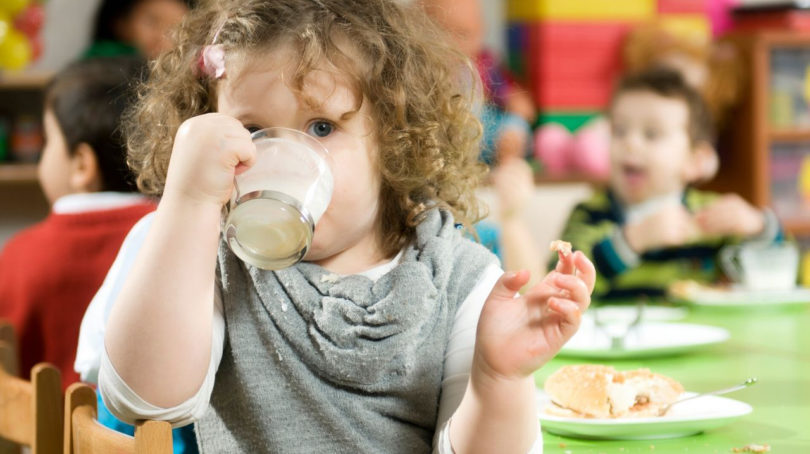 Toddler drinks milk during lunch time at daycare