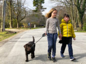 Isla Belton, 8 and Finn Belton, 5, walking four-month-old Timber near their home in Oakville