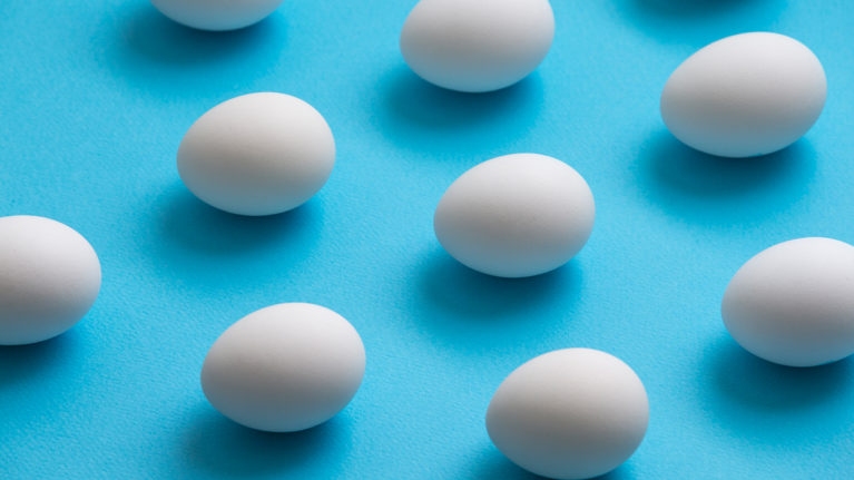 Eggs lined up in a grid on a blue background