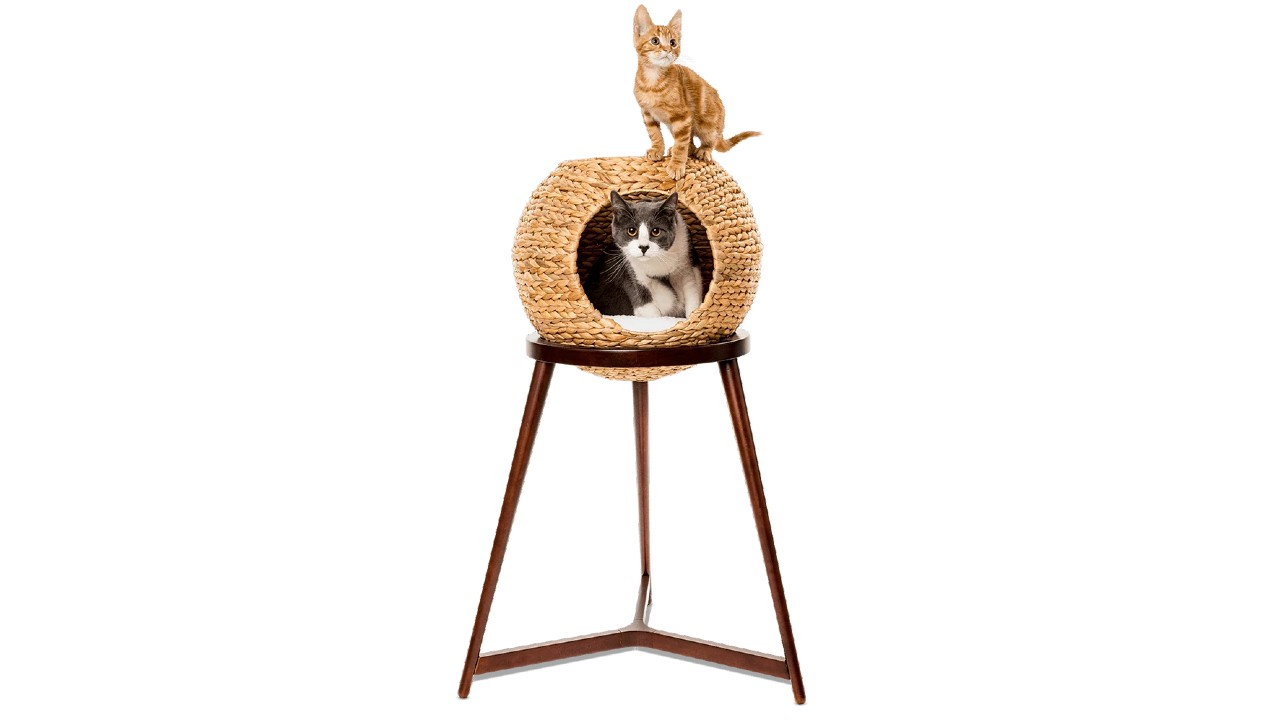 two cats on wicker orb on stand