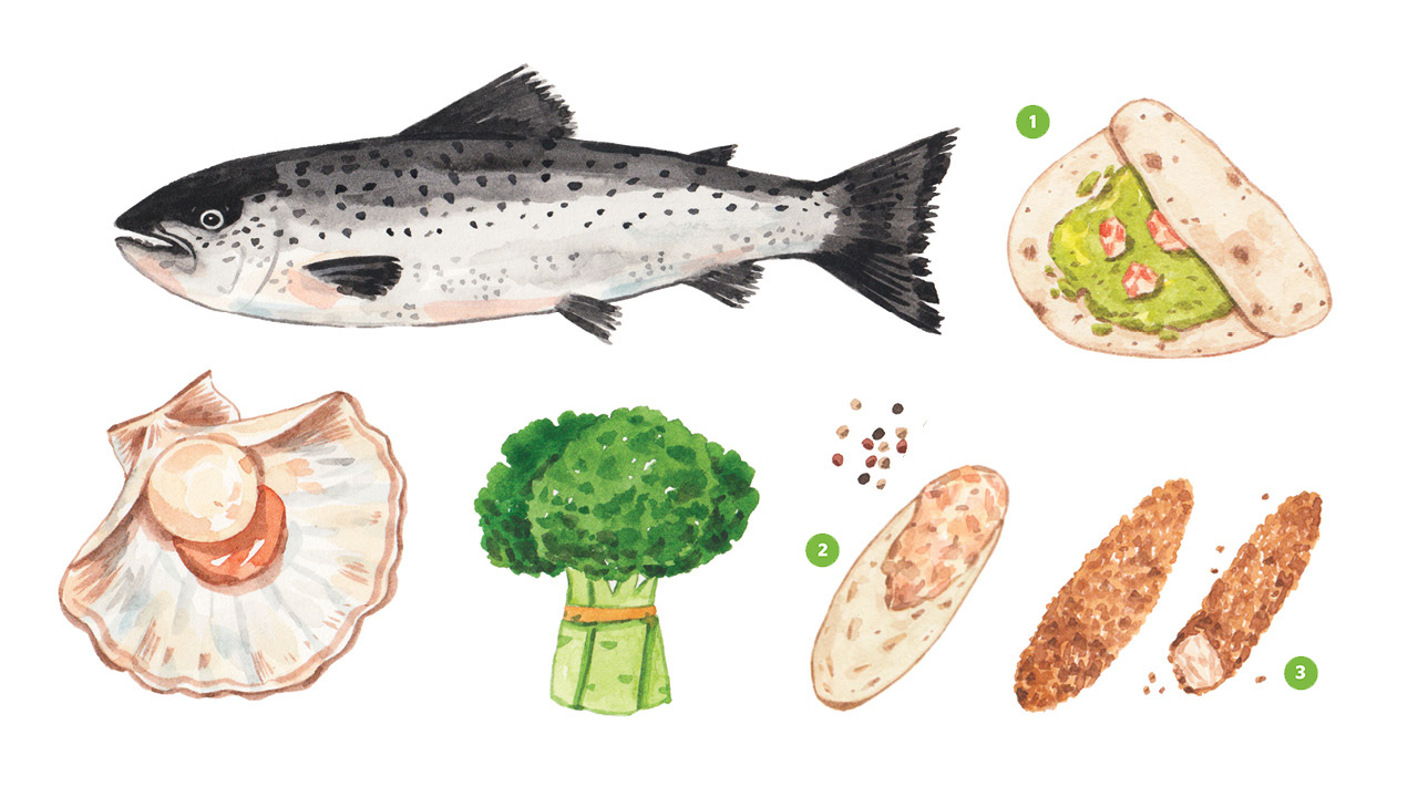Realistic illustrations of a fish, a scallop, a broccoli, shrimp tacos, salmon spread and fish sticks all containing choline