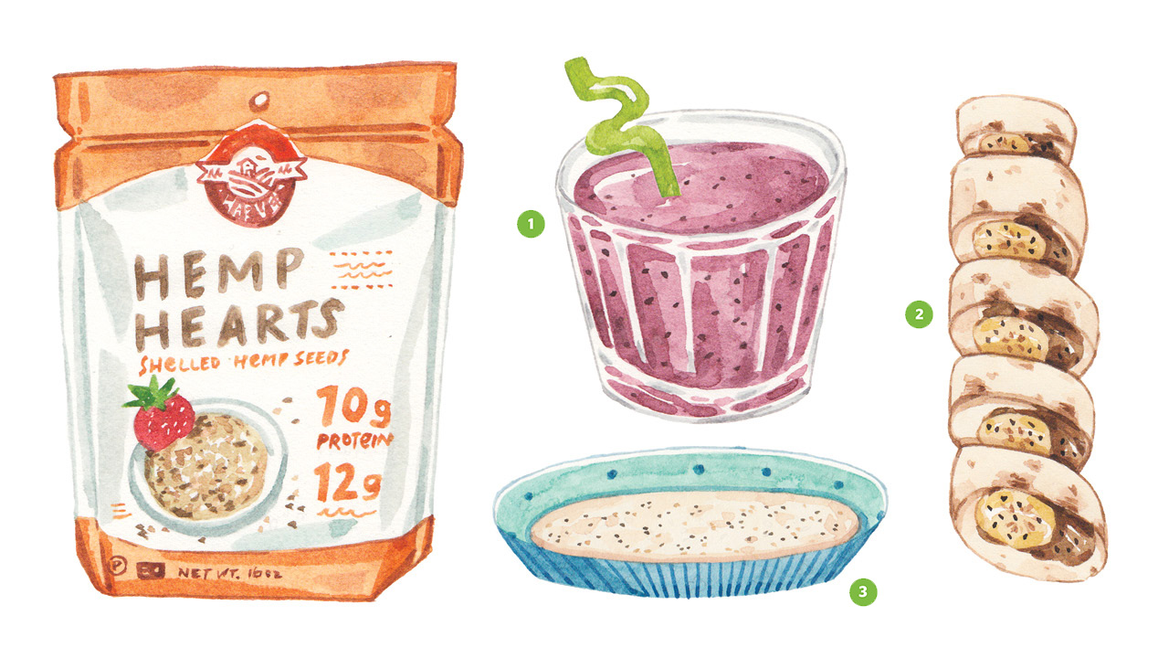Realistic illustrations of hemp hearts, a smoothie, banana sushi and hemp flour all containing DHA