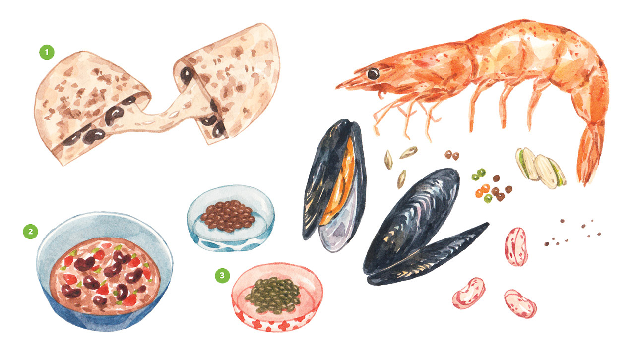 Realistic illustrations of a shrimp, mussels, beans, lentils, chili and a quesadilla