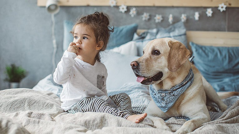 Photo of a kid and a dog sitting in a bed