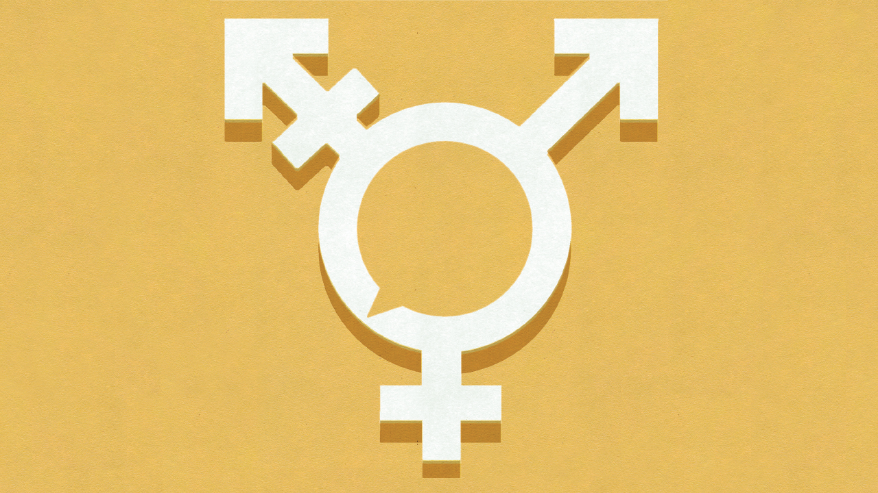 Gender Discussion Terms You Need To Know 1280x720