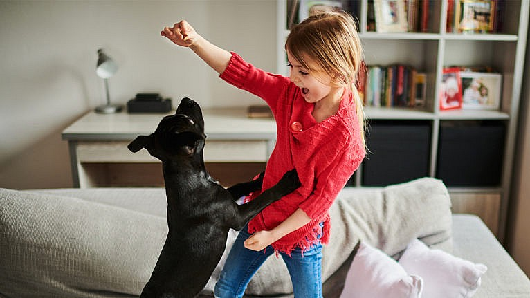 Photo of a little kid playing with a puppy on the couch