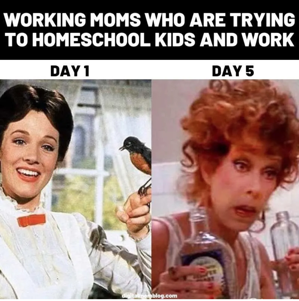 a meme about home schooling that has Mary Poppins looking chipper as Day 1 and Miss Hannigan holding a cocktail as Day 5 for a roundup of the best virtual learning memes