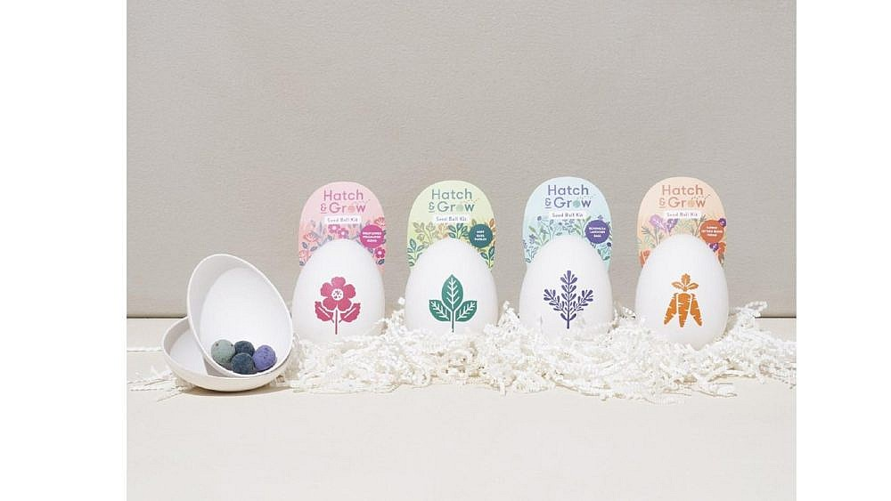 Eco-friendly pulp eggs that have seed balls inside